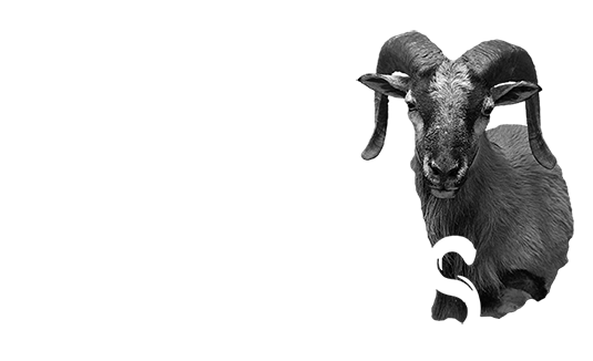Game heads