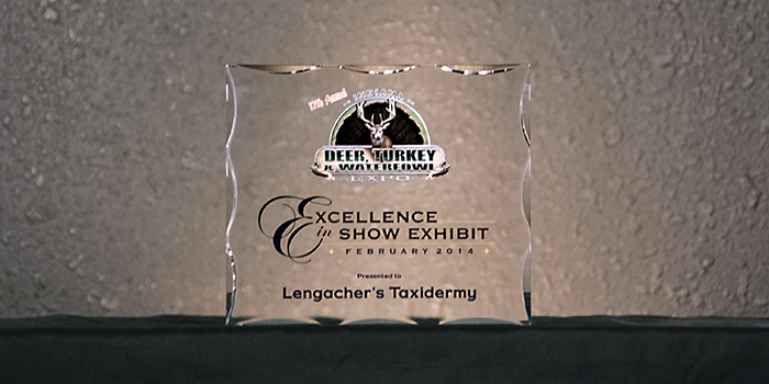Excellence in Show Exhibit